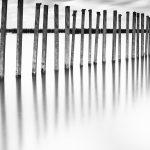 """En-tête de l'article """"Philosophie photographique"""" du blog du photographe Pierre-Louis Ferrer, spécialiste en photographie dans l'ultraviolet et l'infrarouge."""