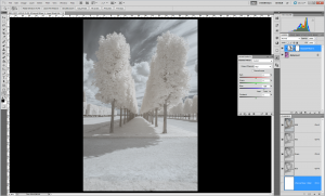 Tutoriel photographie infrarouge - Inversion canaux RVB