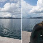 tutoriel luminosité contraste Photoshop : gérez précisément et proprement les tons de vos images.