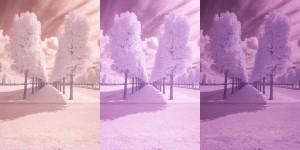 Tutoriel photographie infrarouge - Réglage de la BdB