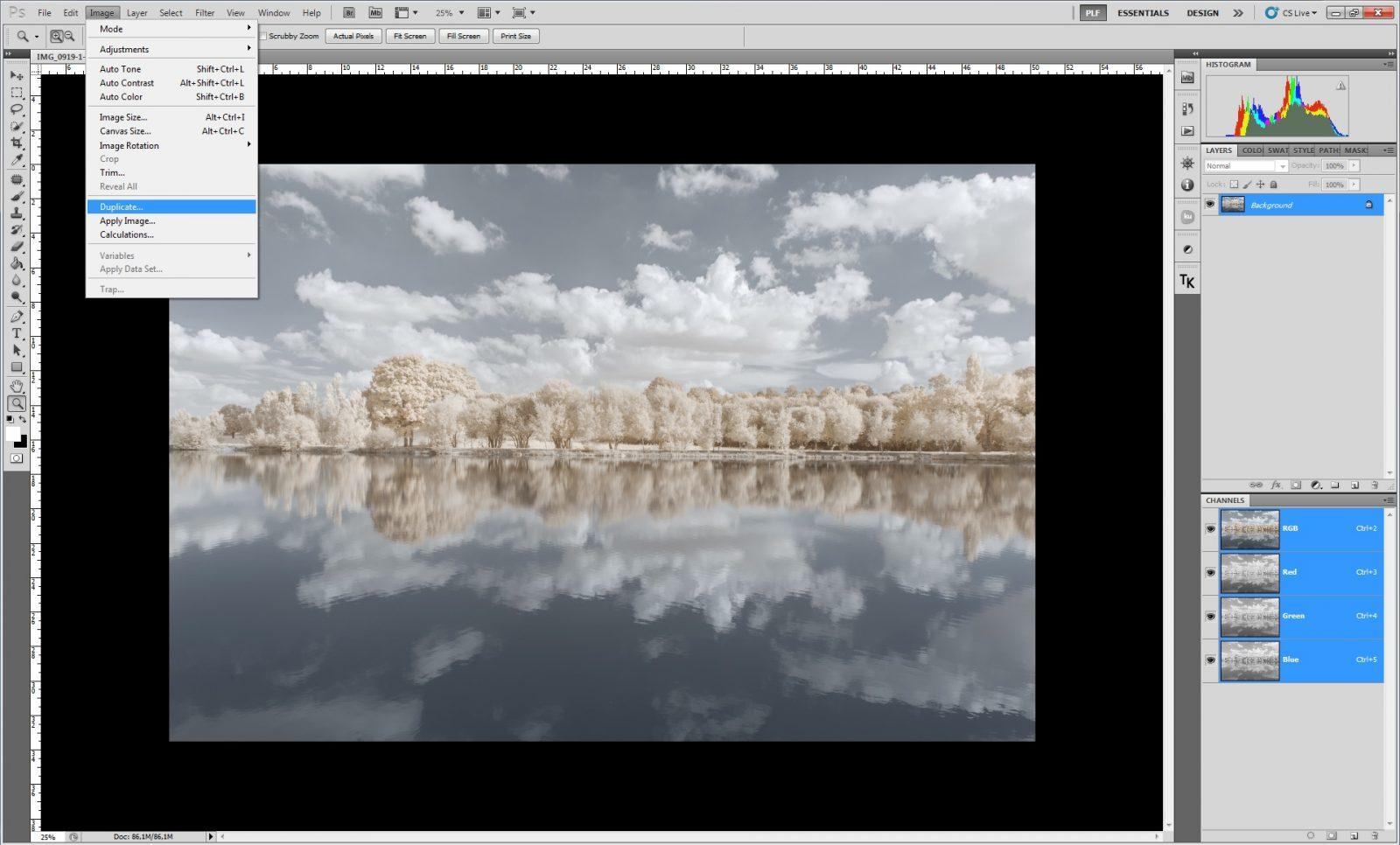 Duplication | Pierre-Louis Ferrer | Infrarouge couleur