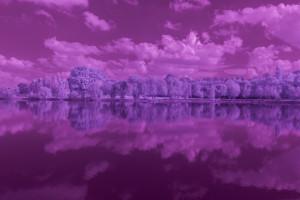 Tutoriel de traitement d'une photographie en infrarouge couleur, par Pierre-Louis Ferrer - étape 1
