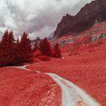 Chemin de randonnée vers le lac de Pormenaz dans la réserve naturelle de Passy en Savoie. Photographie infrarouge, aerochrome numérique de Pierre-Louis Ferrer.