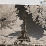 Carte postale commandée par Mécénat Chirurgie cardiaque et illustré par Pierre-Louis Ferrer.