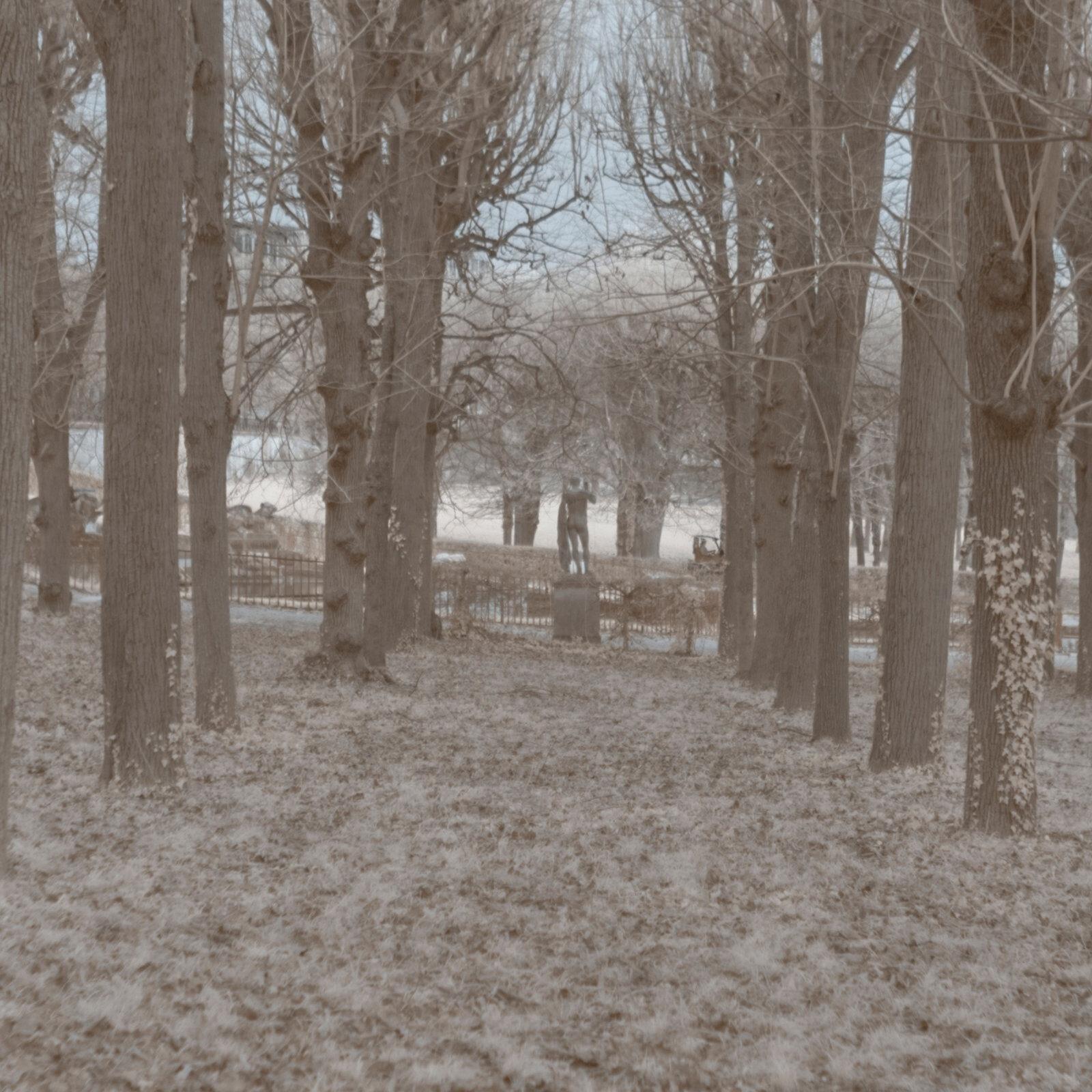 DETAILS 2 24mm F1.4 SIGMA 1 | Pierre-Louis Ferrer | Test du SIGMA 24mm F/1.4 DG HSM Art en photographie infrarouge | Partie 1