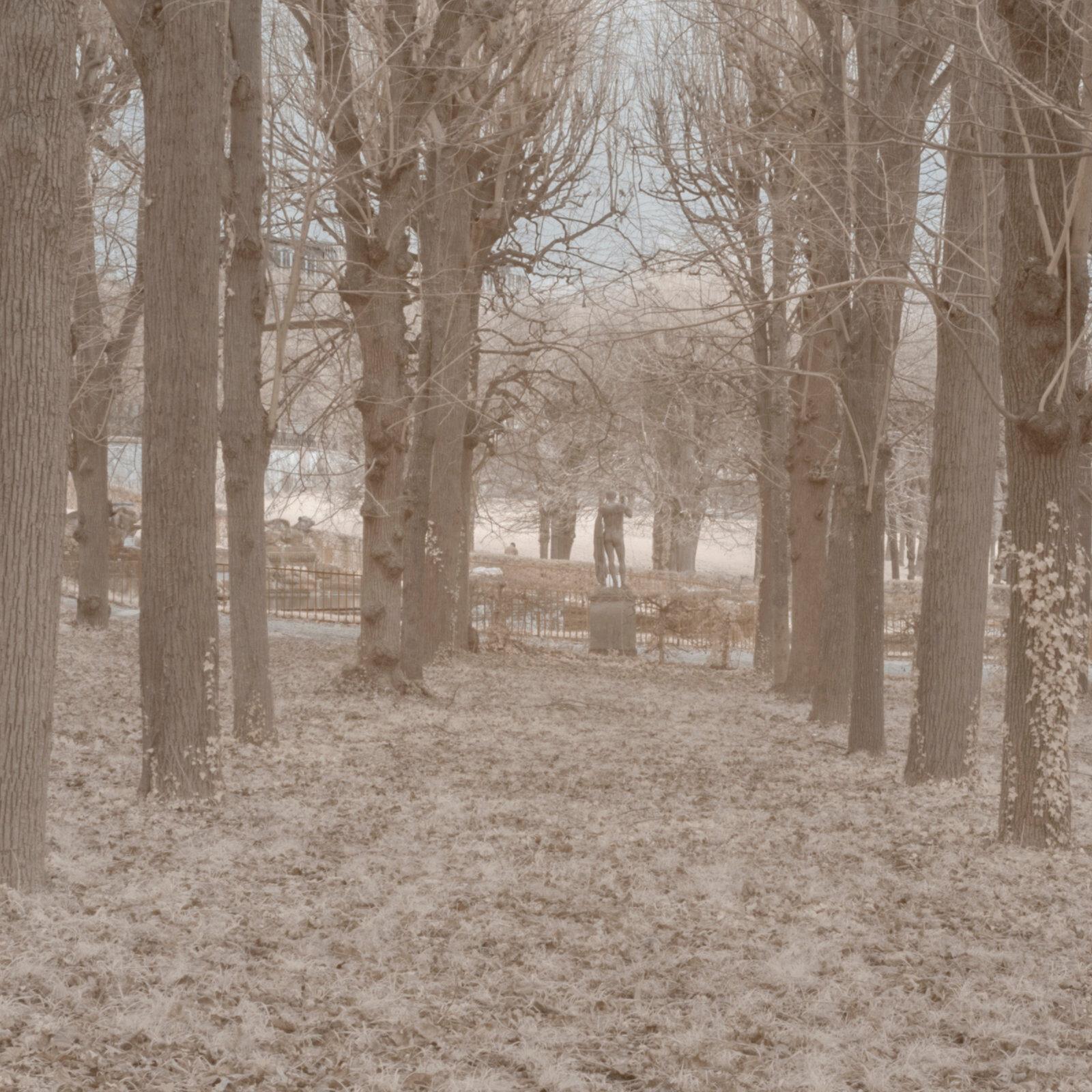DETAILS 2 24mm F11 CANON 1 | Pierre-Louis Ferrer | Test du SIGMA 24mm F/1.4 DG HSM Art en photographie infrarouge | Partie 1