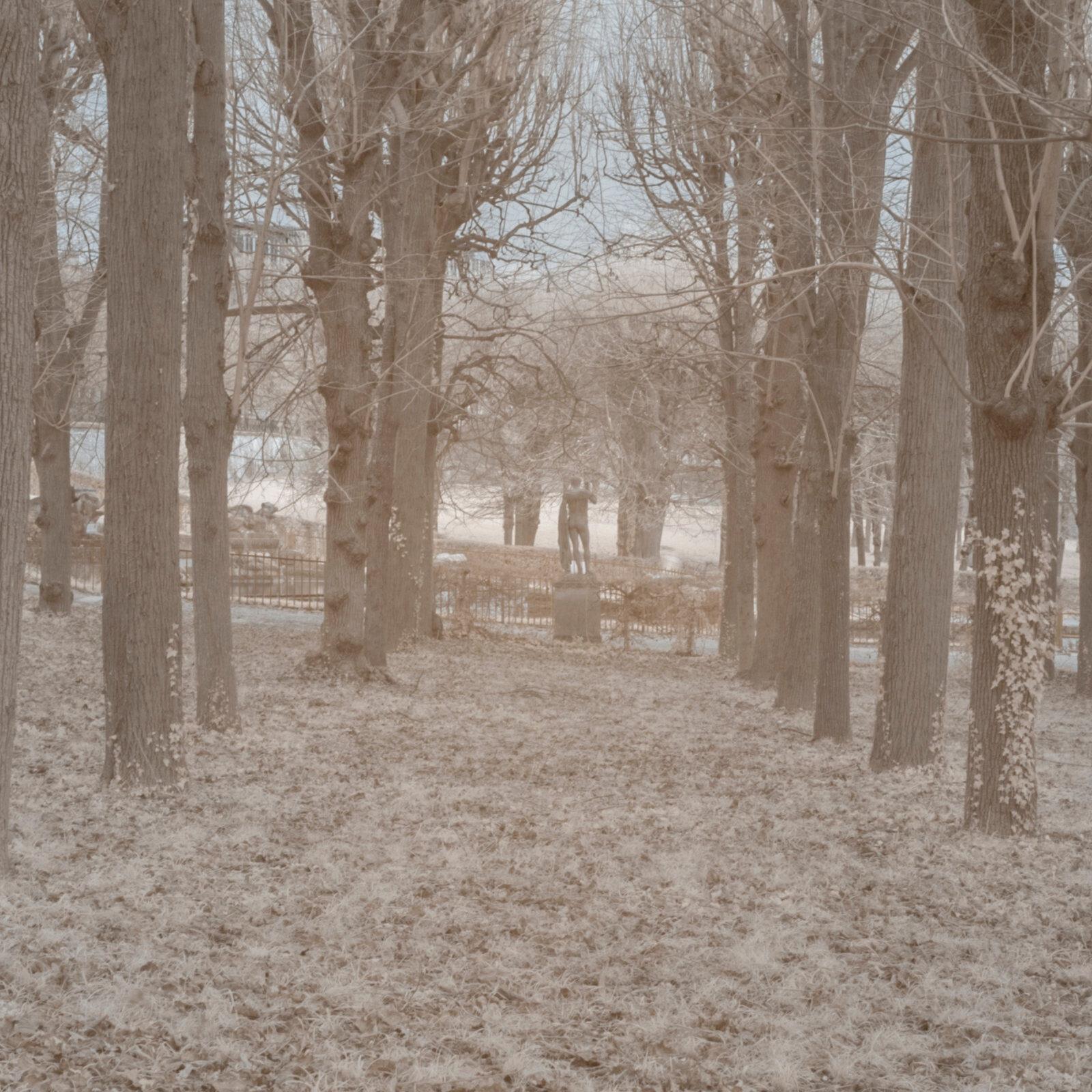 DETAILS 2 24mm F11 SIGMA 1 | Pierre-Louis Ferrer | Test du SIGMA 24mm F/1.4 DG HSM Art en photographie infrarouge | Partie 1