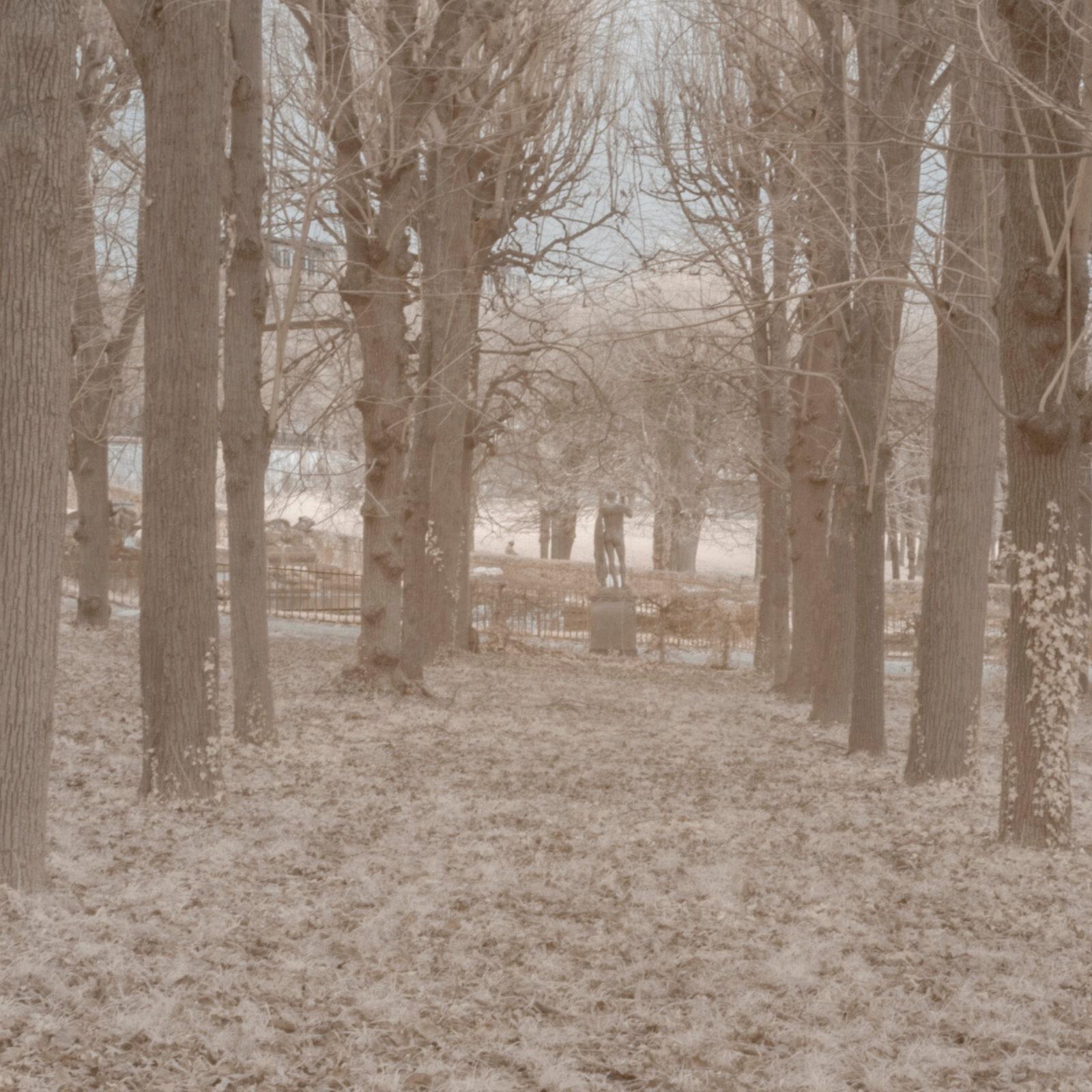 DETAILS 2 24mm F16 CANON 1 | Pierre-Louis Ferrer | Test du SIGMA 24mm F/1.4 DG HSM Art en photographie infrarouge | Partie 1