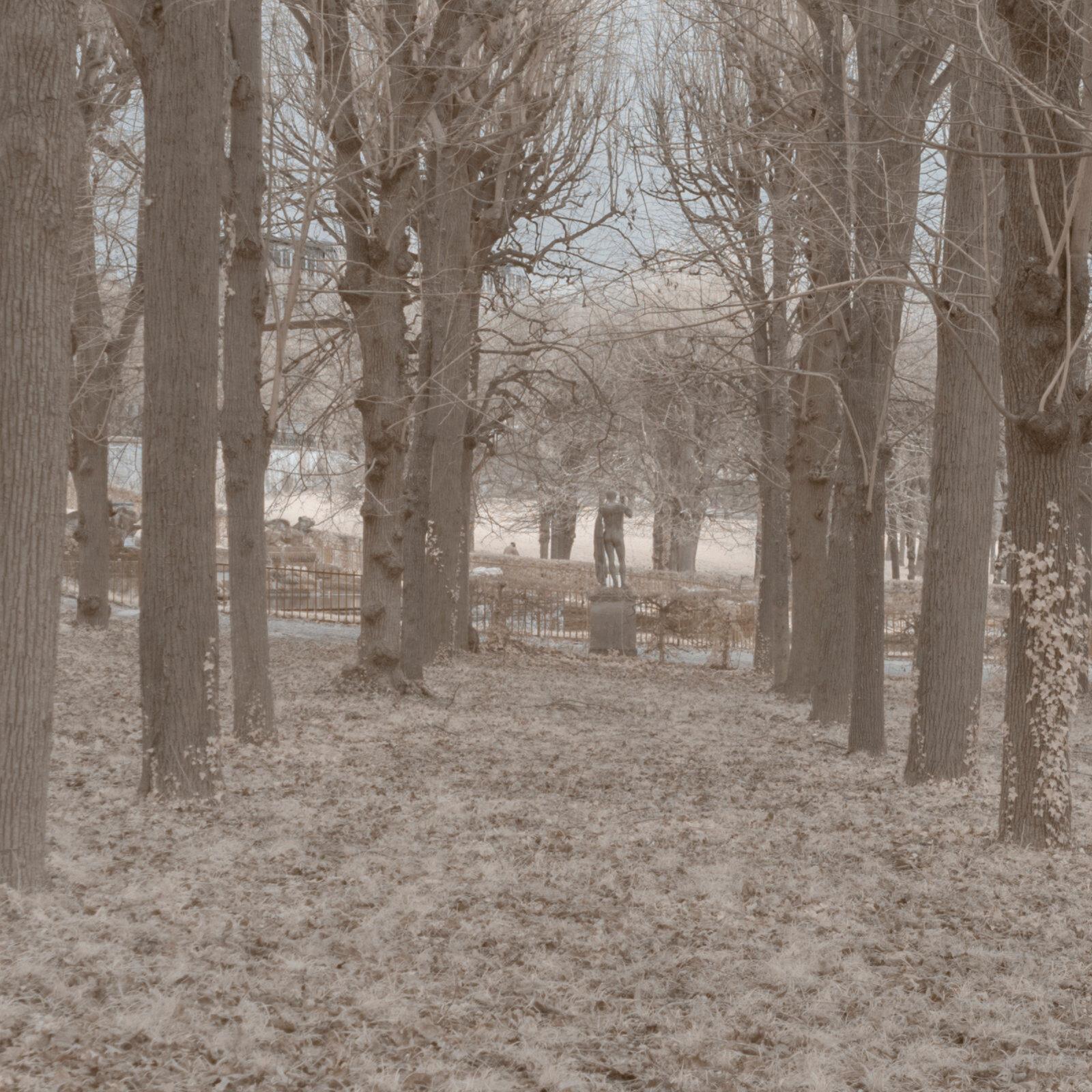 DETAILS 2 24mm F4 CANON 1 | Pierre-Louis Ferrer | Test du SIGMA 24mm F/1.4 DG HSM Art en photographie infrarouge | Partie 1
