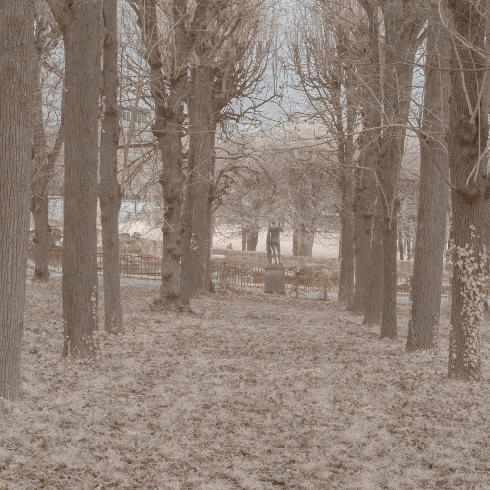 DETAILS 2 24mm F5.6 CANON 1 | Pierre-Louis Ferrer | Test du SIGMA 24mm F/1.4 DG HSM Art en photographie infrarouge | Partie 1