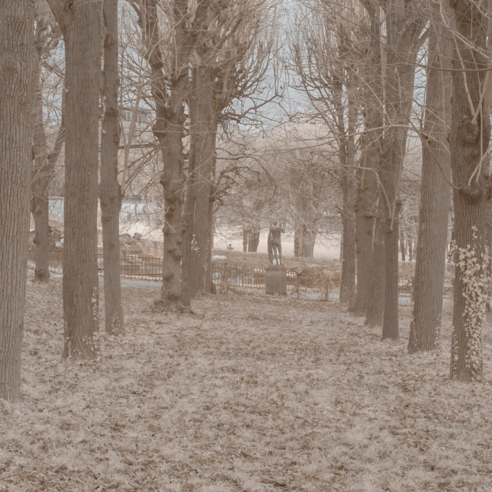 DETAILS 2 24mm F8 CANON 1 | Pierre-Louis Ferrer | Test du SIGMA 24mm F/1.4 DG HSM Art en photographie infrarouge | Partie 1