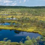 Voyage Lettonie 2021 : à la découverte d'un pays balte