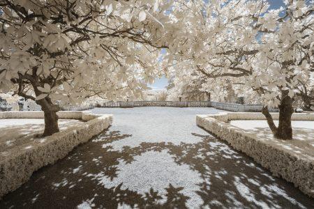 Paysage en infrarouge numérique des jardins du château des Milandes, en Dordogne.