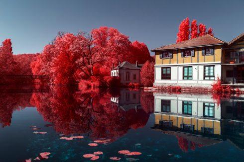 demain-des-l-aube-serie-infrarouge-bar-grand-est-photographie-infrarouge-vigne-paysage-abandon-misere-rouge-champagne-Pierre-Louis-FERRER-15-2