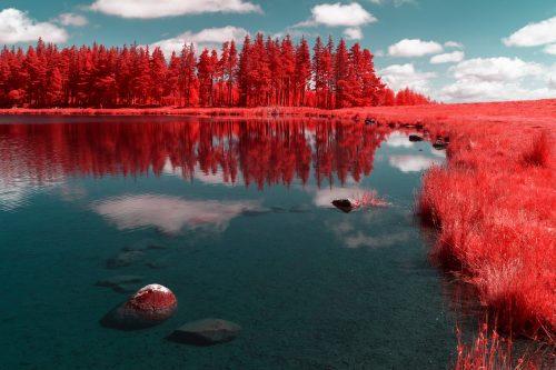 photo auvergne en infrarouge lac de servieres photographie infrarouge pierre-louis ferrer (2) copie